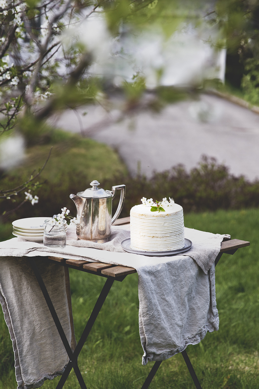 cake under blossom cherry tree