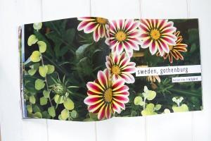 svetlanalarina-photos-botanic-page-in-photobook